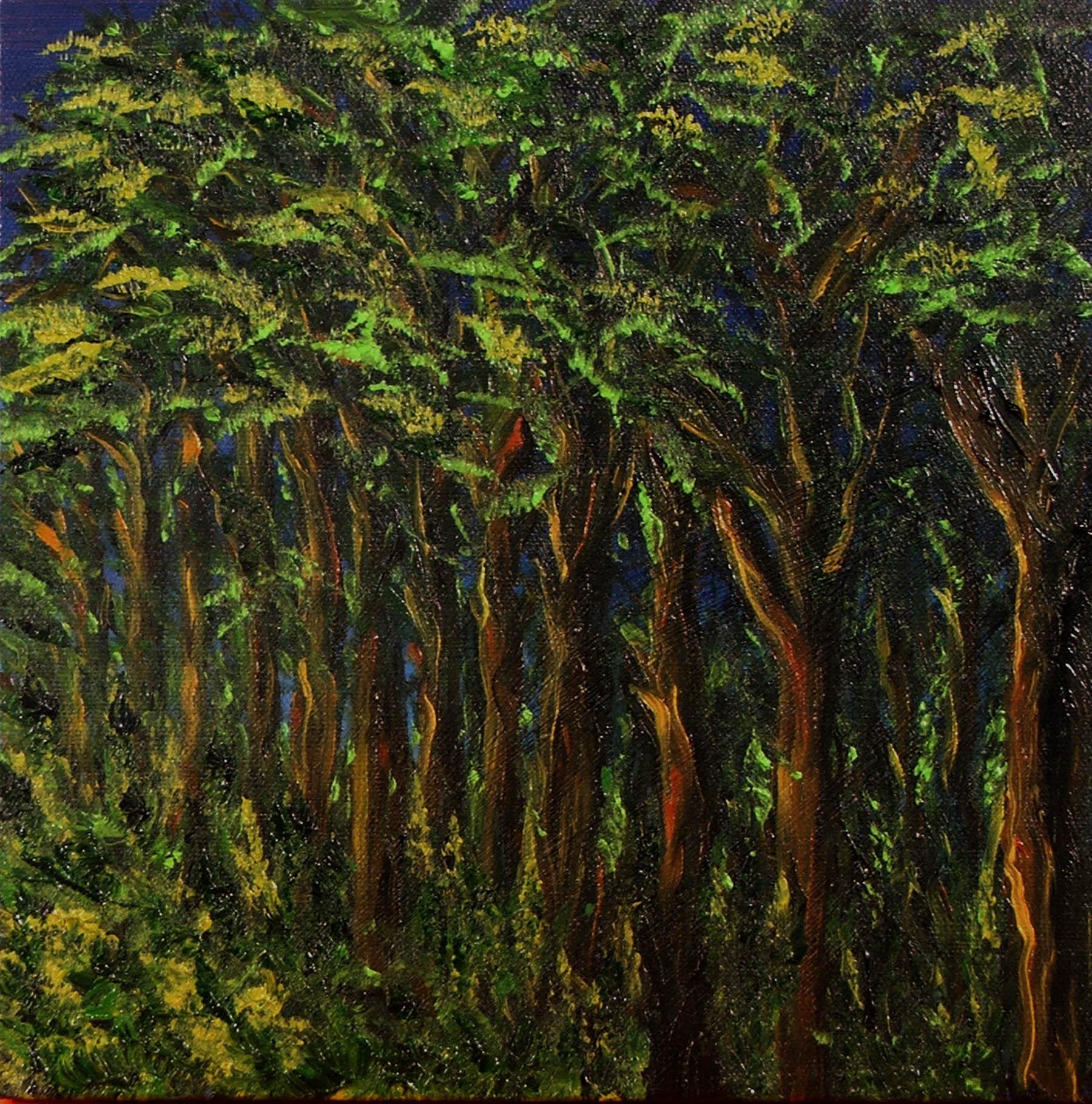 Tree Study 1
